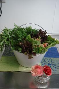 お洒落な野菜たち.jpg