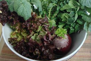 お洒落な野菜たち3.jpg