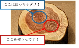樹木の年輪加工.jpg